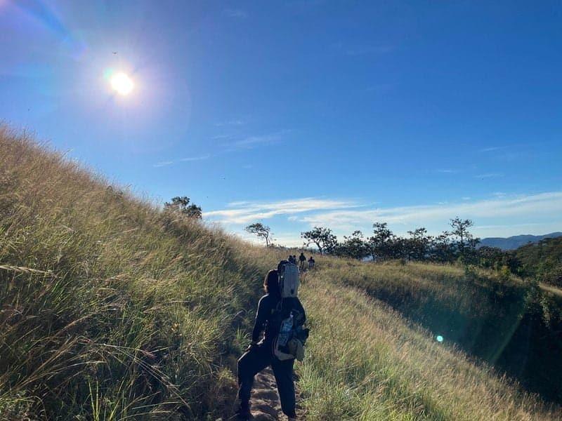 Những cánh đồng cỏ trải dài trên hành trình trinh phục Cung đường Tà Năng Phan Dũng