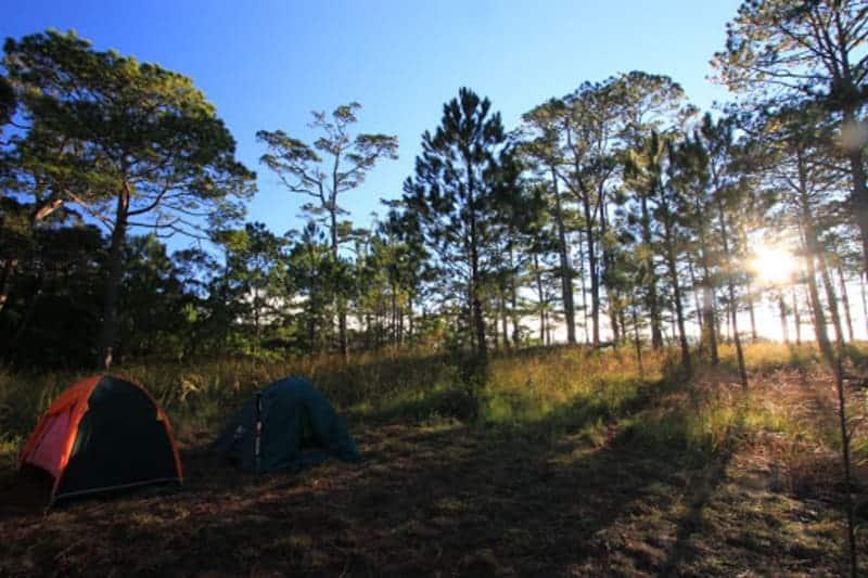 Trải nghiệm cực thú vị khi cắm trại qua đêm tại Vườn quốc gia Bidoup Núi Bà