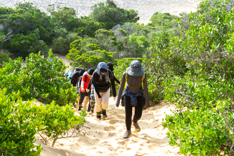 Trekking qua cung rừng bụi thấp - Cung Trekking Cực Đông