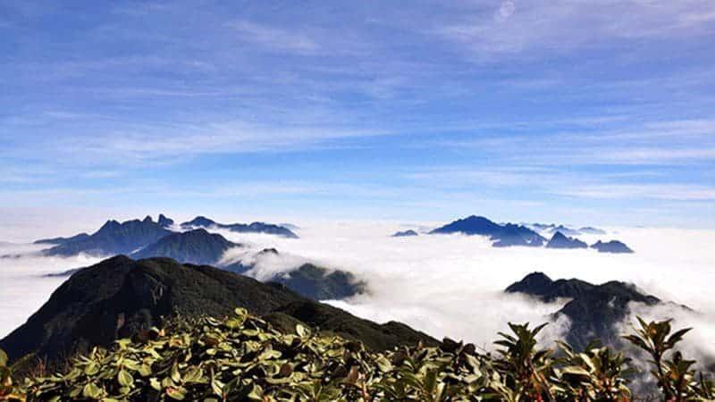 Review Putaleng – Đỉnh Núi Cao Với Loài Hoa Đỗ Quyên Rực Rỡ