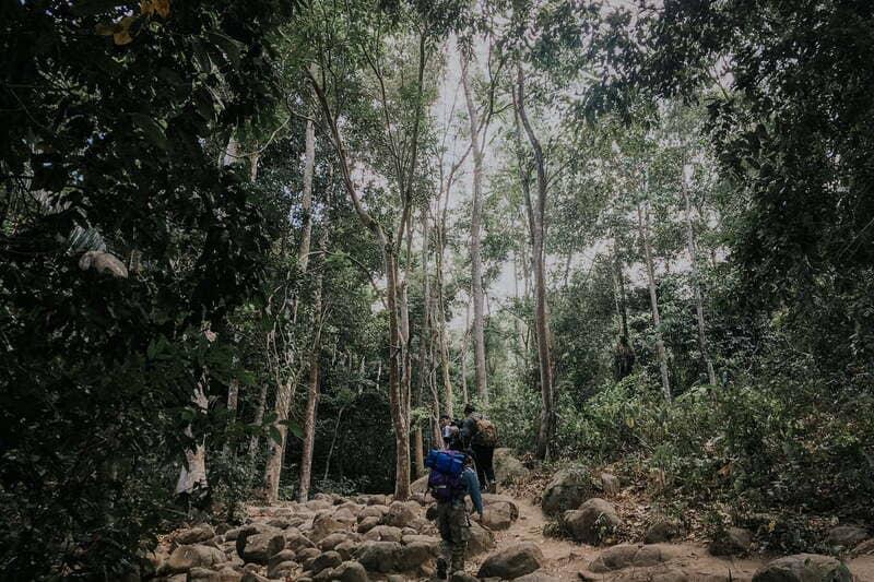 Cung đường di chuyển theo cột điện khi leo núi Chứa Chan