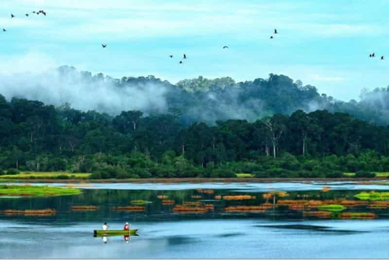 Vườn Quốc Gia Nam Cát Tiên - Địa điểm lý tưởng để khám phá